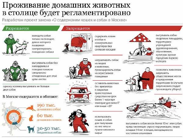 Правила выгула животных в городе